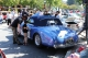 2017-Danville-Concours-MD-0314_exposure_resize