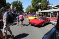 2017-Danville-Concours-MD-0376_exposure_resize