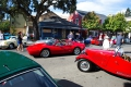 2019-09-22_Danville-Concours_BAMI0023_resize