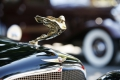 2017-Danville-Concours-MD-0050_exposure_resize